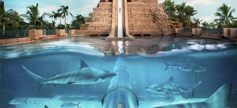 Harborside Resort At Atlantis The Vacation Advantage The